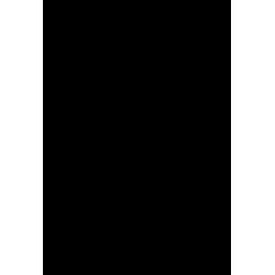 NaNLogo